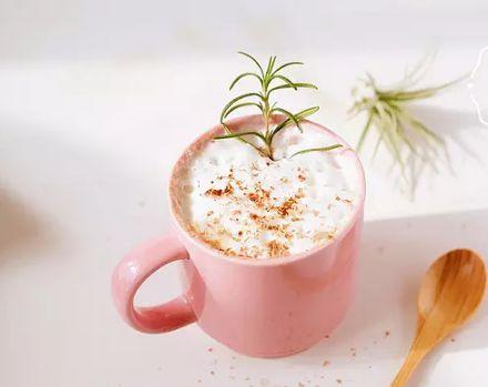 红茶咖啡拿铁 菜谱   赛厨易